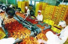 2020年农村加盟办厂创业项目(农村小型加工厂创业项目