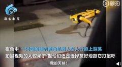 机器狗夜晚独自在街头游荡,强烈抨击机器人技术